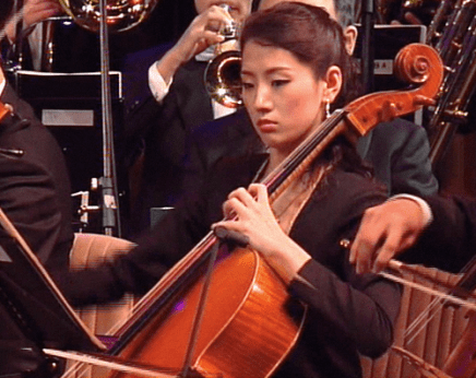 cello unknown 20100500 43.56