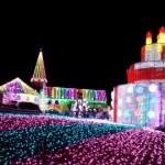 千葉のクリスマスおすすめスポットまとめ☆
