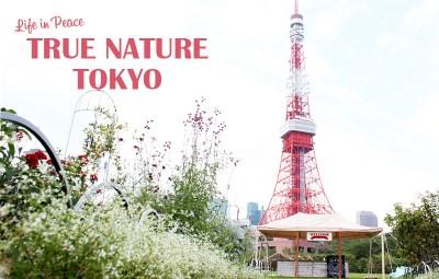 True Nature in Tokyo