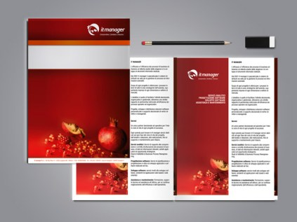 It manager brochure