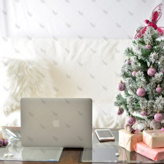 UD Pink Christmas 17 © Unicorn Dreamlandia Styled Stock