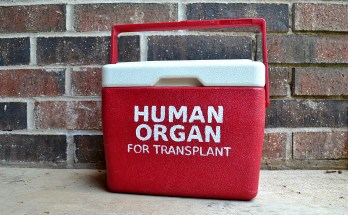 DIY Human Organ Cooler