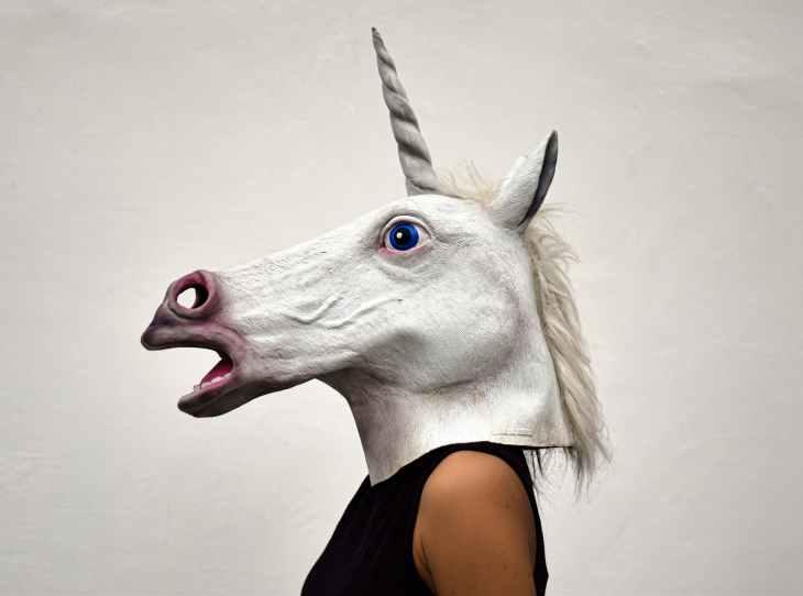 white unicorn head costume