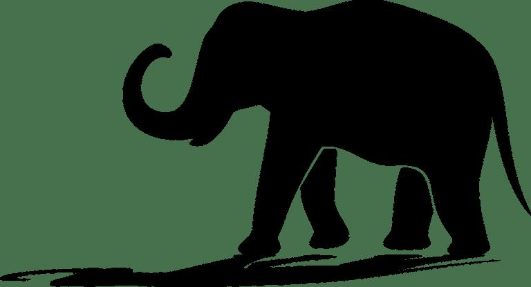 elephant, silhouette, shadow