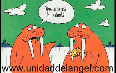 Higiene dental con braket