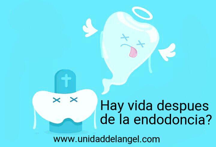 Dolor durante la endodoncia