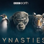 Dynasties: What time is it on?