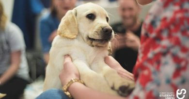 Puppy-cuddling event returns to CCCU