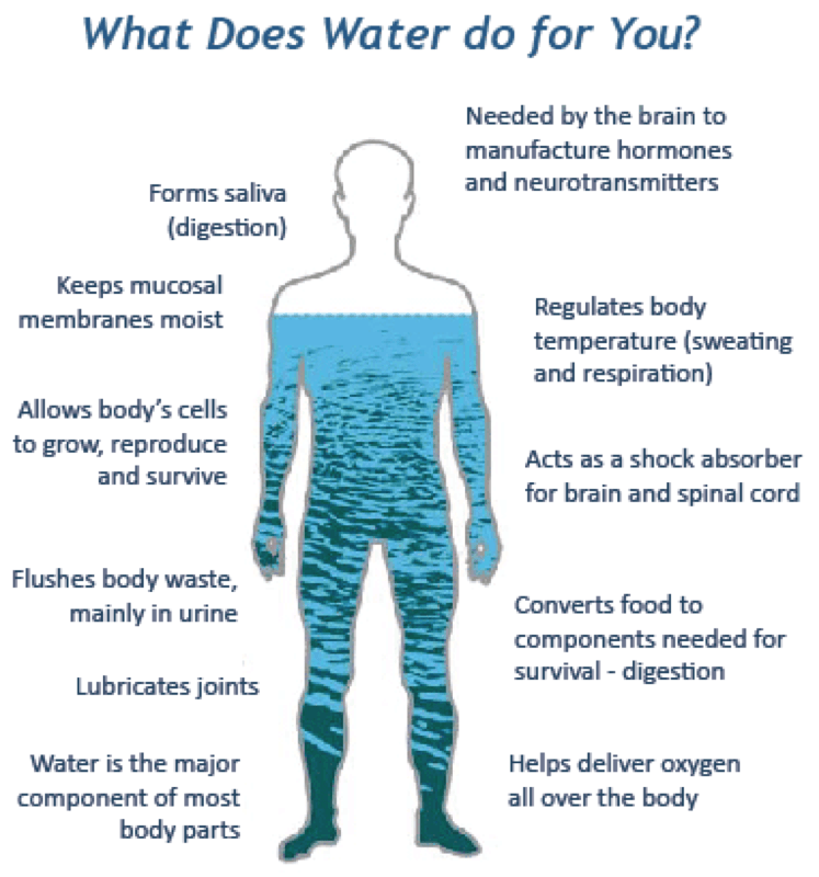 What does water do for you (Source: USGS)