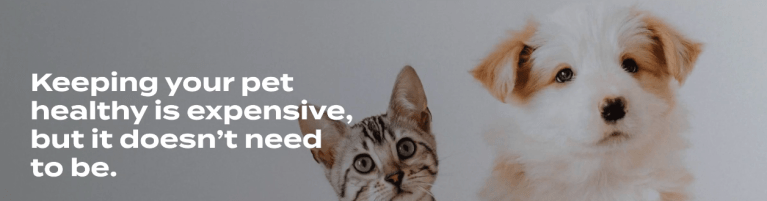 3 Reasons Why Pet Wellness Plans are Important