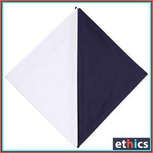 School-Teacher-Uniforms-Fabrics-Set-F-Blue-2