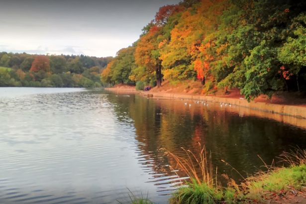 Roundhay Park Leeds, lake and autumnal leaves