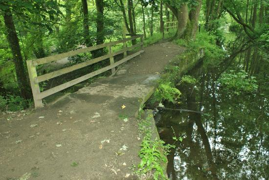 Meanwood Nature Trail