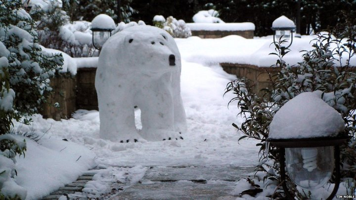Polar bear made out of snow