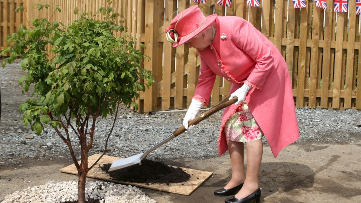 Queen planting trees