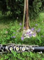 instrumente-im-gruenen