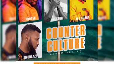 Counter Culture by Protek Illasheva Album Review
