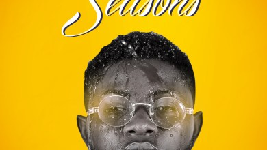 Seasons by Czin mp3 download