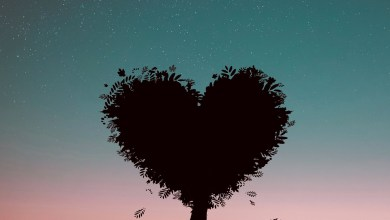 Afro Love (Vol.1) Valentine's Gift by Jlyricz
