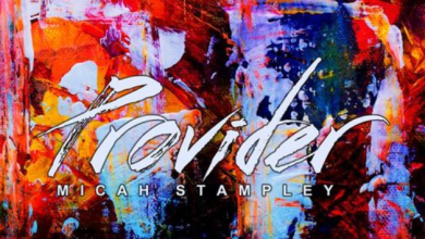 Provider by Micah Stampley