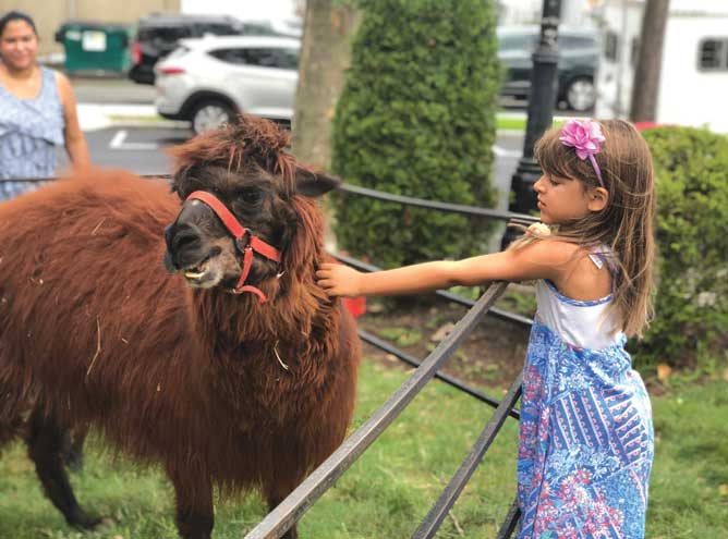 Clucking, bleating and baaing at the Kenilworth Library