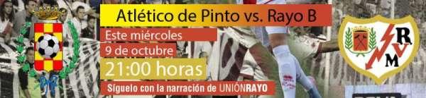 Pinto-Rayo B