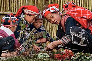 10 ימים בווייטנאם מצפון לדרום