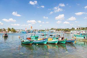 פוקוק- פינוקים באי הגדול ביותר בווייטנאם