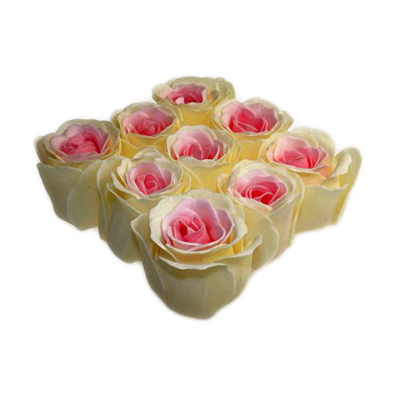 Bath Roses - 9 Roses in Gift Box (Peach) artnomore.co.uk