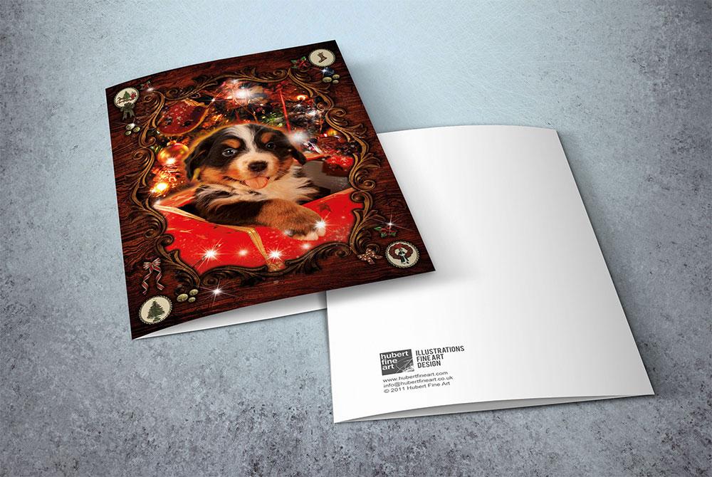 Santa Claus greeting cards - Surprise Gift