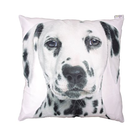 decorative art print white dalmatian cushion image