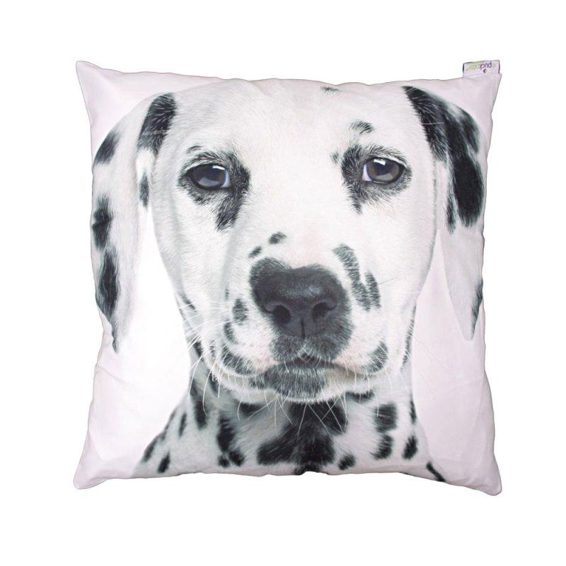 decorative art print white dalmatian cushion image