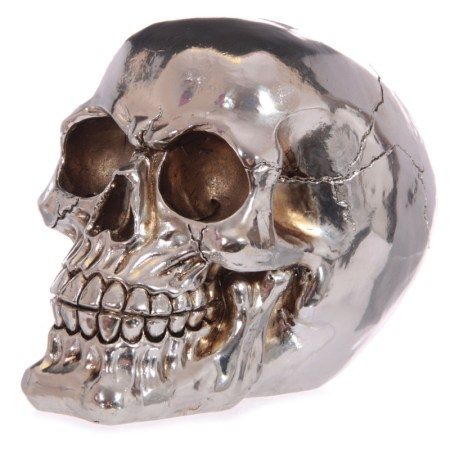 silver skull money box image 01