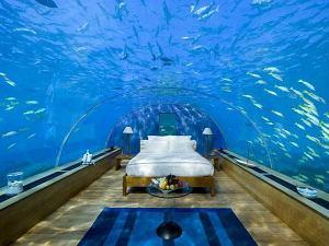 水族館さながらの寝室