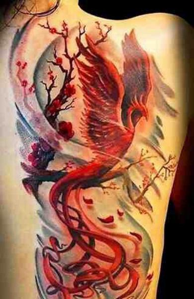 Татуировка феникс значение эскизы тату и фото
