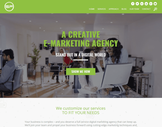Website Copy for Super Fresh Media