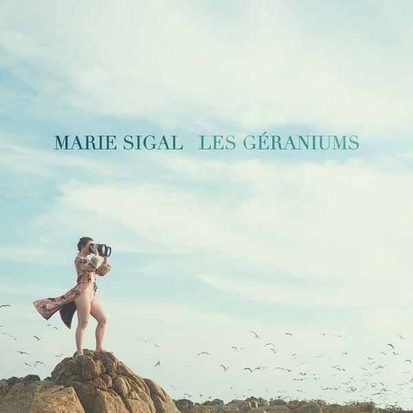 lesgeraniums-Msigal.jpg