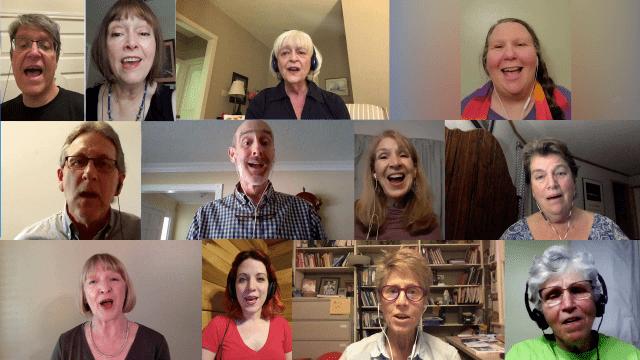 Screenshot of twelve adults singing in a virtual choir