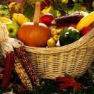 Autumn havest