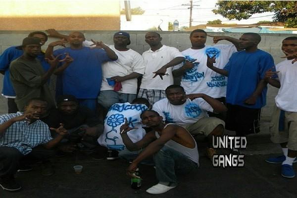 East Coast Crips: Gang Case FIles: Grape Street Crips Enter And