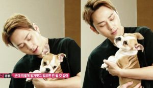 K-Pop, Pets, HIGHLIGHT, Junghyung, Hyungnim, Dog