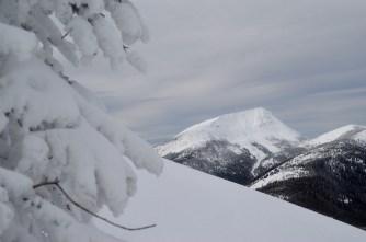 Top of Grey North