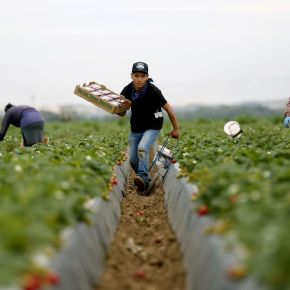 Fear-mongering hides the obvious truth: America thrives as a nation because of immigration