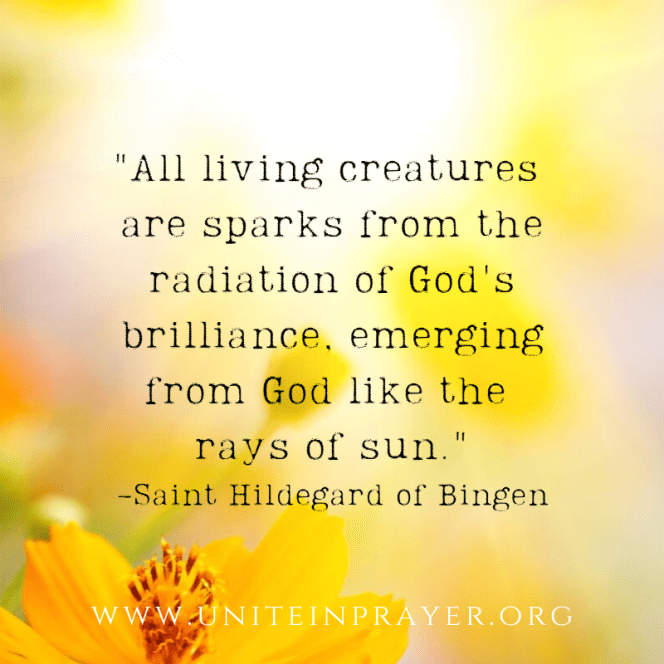 _All living creatures are sparks from the radiation of God's brilliance, emerging from God like the rays of sun._ -Hildegard of Bingen