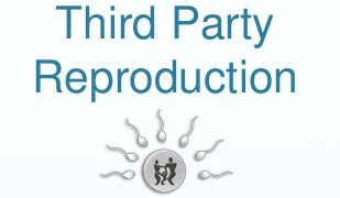 Third Party Reproduction and Its Effects