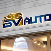 professional automotive logo design (1)