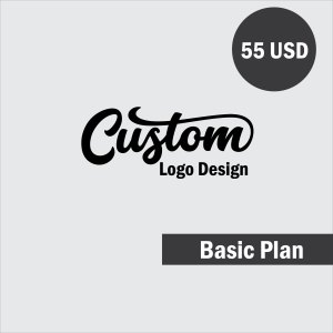custom logo design basic