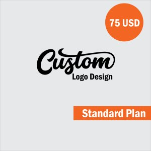 custom logo design standard