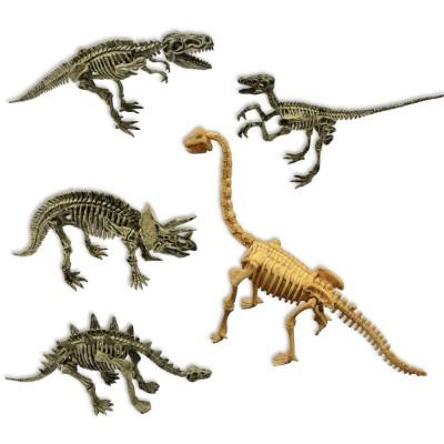 Excavaciones fósiles 5 en 1