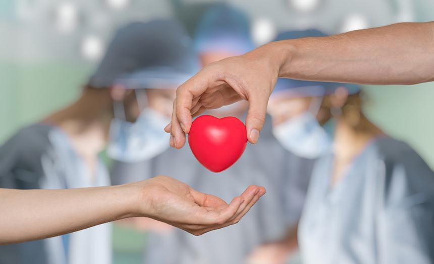 Donación de órganos: salvando vidas después de la muerte